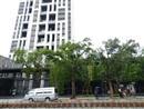 台北市士林区