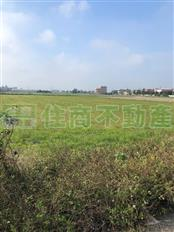 四湖安慶農地